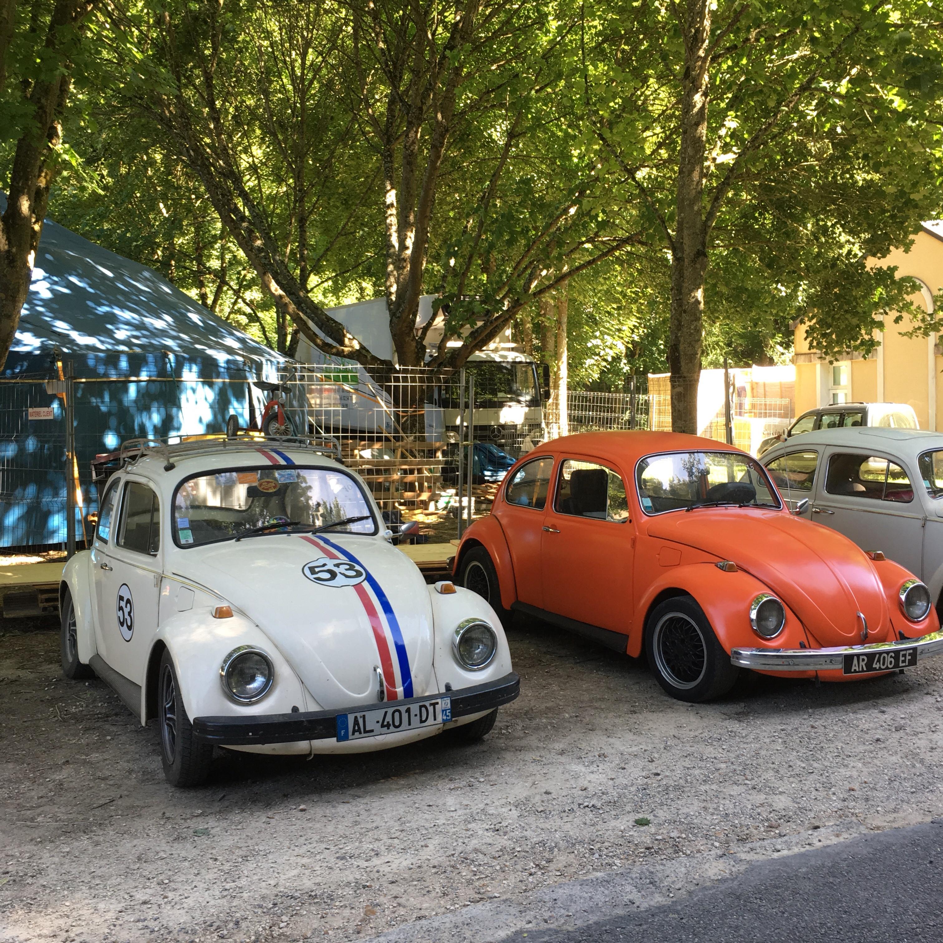 Coccinelle-local41